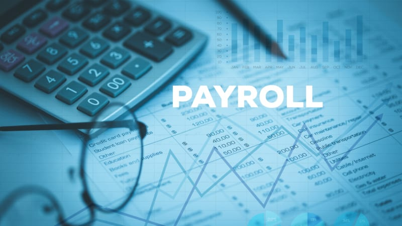 a payroll professional can help with security in payroll